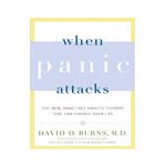 When Panic Attacks: The New, Drug-Free Anxiety Therapy That Can Change Your Life by David D Burns
