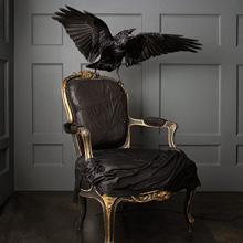 Fear of Furniture Phobia - Furniturephobia
