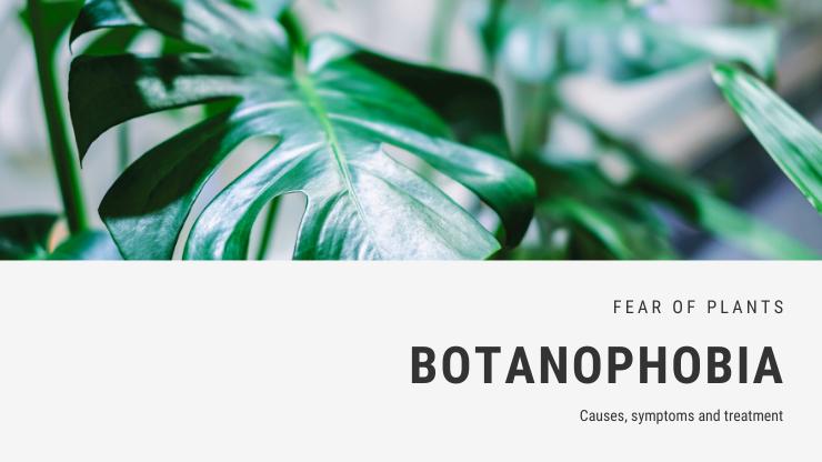 Botanophobia