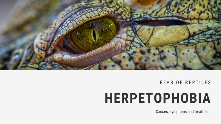 Herpetophobia
