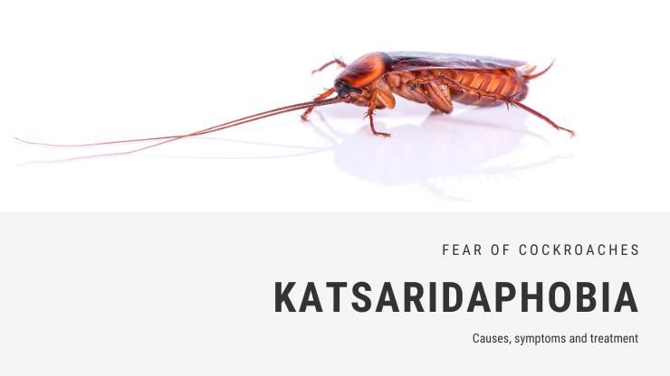 Katsaridaphobia