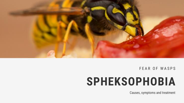 Spheksophobia
