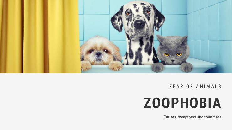 Zoophobia
